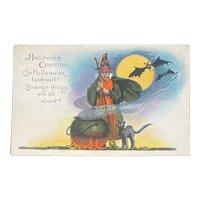 Unused Halloween Postcard Witch Cauldron Black Cat Bats Full Moon Hallowe'en & Designs Series 363