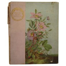 1887 Victorian Poetry Book - Song of the River by Charles Kingsley, Illustrated