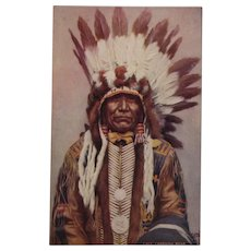 Indian Chief 'Charging Bear'  Postcard by Tuck, Native American