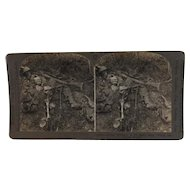 WWI Stereoview Human Wreckage in No Man's Land Chemin des Dames France
