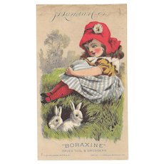 1882 Larkin Boraxine Girl with Bunnies Victorian Trade Card