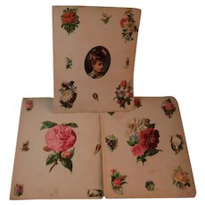 1880s 9 Victorian Scrapbook Pages Flower Diecuts Die Cuts and More