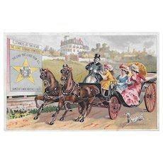 Dalmatian Horse & Buggy Victorian Trade Card for Domestic Sewing Machine Co Dog Ladies with Parasol