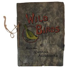 1912 Wild Birds of Mohonk, Catskills and Adirondacks Book by Chester Reed with Color Illustrations