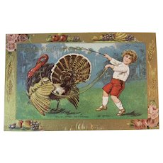 1909 B. Hofmann German Thanksgiving Postcard Edwardian Boy and Turkey Embossed Germany