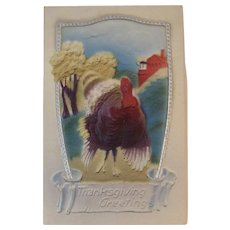 1908 German Air Brushed Thanksgiving Postcard Turkey Germany