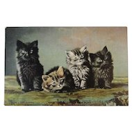 1906 Tuck Landor's Cat Studies Postcard Chromotype Saxony Germany German Four Little Cats From Play Kitty Kitties