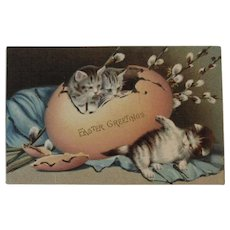 German Easter Postcard Kittens Hatching from an Egg with Glitter Cats Kitty Kitties