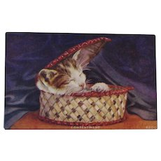 Contentment Sleeping Cat in a Basket Postcard - Red Tag Sale Item