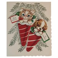 Kitty Cat and Puppy Dog 3 D Christmas Card Flocked Stockings