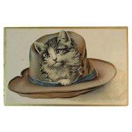 Cat in a Hat Embossed Postcard Kitty Kitten