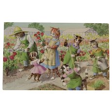 Alfred Mainzer Cats in the Garden Postcard
