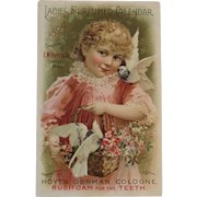 1894 Ladies Perfumed Calendar Hoyt's German Cologne Rubifoam for the Teeth Victorian Advertising Trade Card
