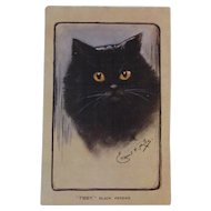 Artist Signed Black Persian Cat Postcard