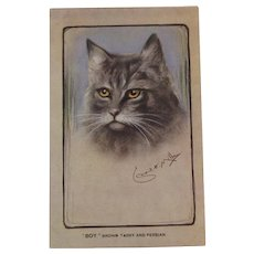 Artist Signed Brown Tabby and Persian Cat Postcard