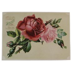 Cosmo Buttermilk Toilet Soap Victorian Trade Card with Pink Roses Advertising