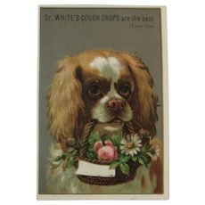 Dr. Whites' Cough Syrup Chromolithograph Trade Card with Puppy Dog and Basket of Flowers Victorian Advertising