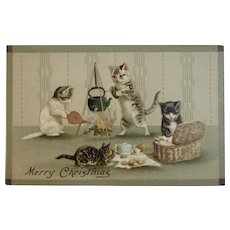German Cats Picnic Merry Christmas Postcard Germany