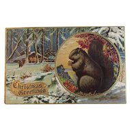 Squirrel Postcard HSV Litho Co Embossed Christmas Greetings