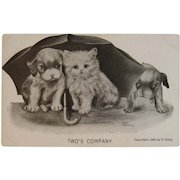 1909 Colby Cat and Puppy Dog with Umbrella Postcard Unused Two's Company