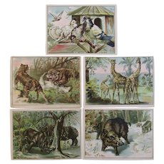 5 Lion Coffee Victorian Advertising Trade Cards with Animals and Birds