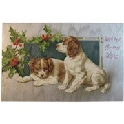 German Embossed Christmas Puppy Dog Postcard Germany