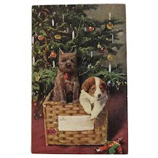 Puppies in a Basket Christmas Postcard Puppy Dogs by German American Novelty Co Germany