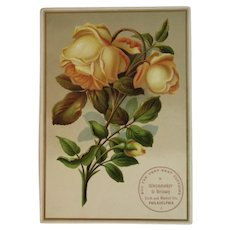 1889 Large Embossed Victorian Yellow Rose Trade Card from Wanamaker & Brown Philadelphia Pennsylvania