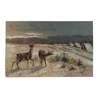 1909 EAS German Deer Christmas Postcard Embossed