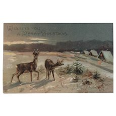 1909 EAS German Deer Christmas Postcard Embossed