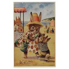 Racey Helps Dressed Rabbits Postcard At the Seaside Unused Medici Society Summer Beach Scene