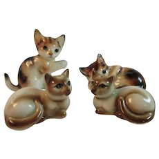 2 Pair of Kitty Cat Salt and Pepper Shakers Siamese and Tabby