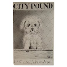 1909 Colby Puppy Dog in the City Pound Postcard