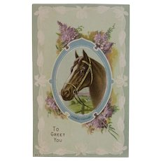 Embossed Horse Postcard A Noble Charger