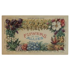 1818 WWI Flowers of the Allies Postcard World War I Curtice S McCain