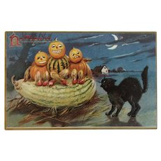 Tuck German Halloween Postcard Pumpkin Gourd Men Black Cat Series 150 Tuck's Embossed Hallowe'en