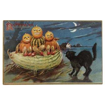 Tuck German Halloween Postcard Pumpkin Gourd Men Black Cat Series 150 Tuck's Embossed Hallowe'en