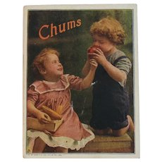 1920s Childrens Book Chums American Colortype Co