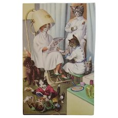 Alfred Mainzer Dressed Cats Postcard At the Beauty Shop 4950