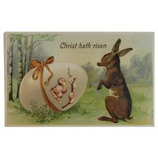 German Easter Postcard Bunny Chick in Egg Embossed Germany Christ Hath Risen