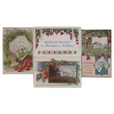 4 Washington's Birthday Postcards Cherry Tree Motif Cherries Embossed President's Day Taggart