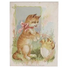 1894 Woolson Spice Kitty Cat and Easter Chick Hatching from Egg Picture Card Lion Coffee Advertising Trade Card Gast Lith Co