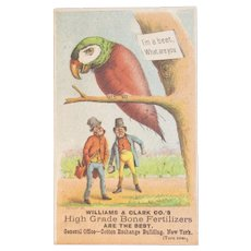 1887 Victorian Fantasy Trade Card Bird as a Beet Williams & Clark Bone Fertilizers New York Advertising