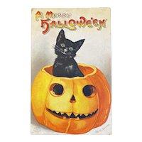 1921 Signed Clapsaddle Halloween Postcard International Art Publishing Co IAP Black Cat JOL Jack O Lantern 1237