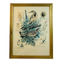 Floral and Fauna Mid-Century Print Arthur Singer Western Meadowlark Bird Number 7 in a Series