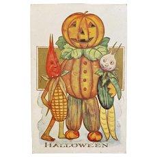 Anthropomorphic Pumpkin Vegetable Man Halloween Postcard Embossed Unused JOL Jack o Lantern