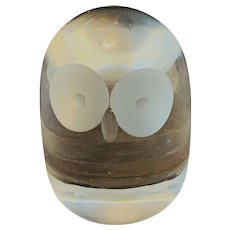 Glass Owl Frosted Eyes Paperweight