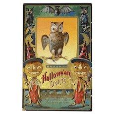 1911 M L Jackson Halloween Don'ts Postcard Owls Bats Pumpkin Corn Men Jack O Lanterns JOL Embossed