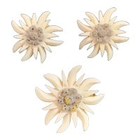 Carved Edelweiss Flower Pin and Earring Set