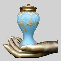 Vintage Satin Glass Talc Shaker Muffineer Hand Enameled